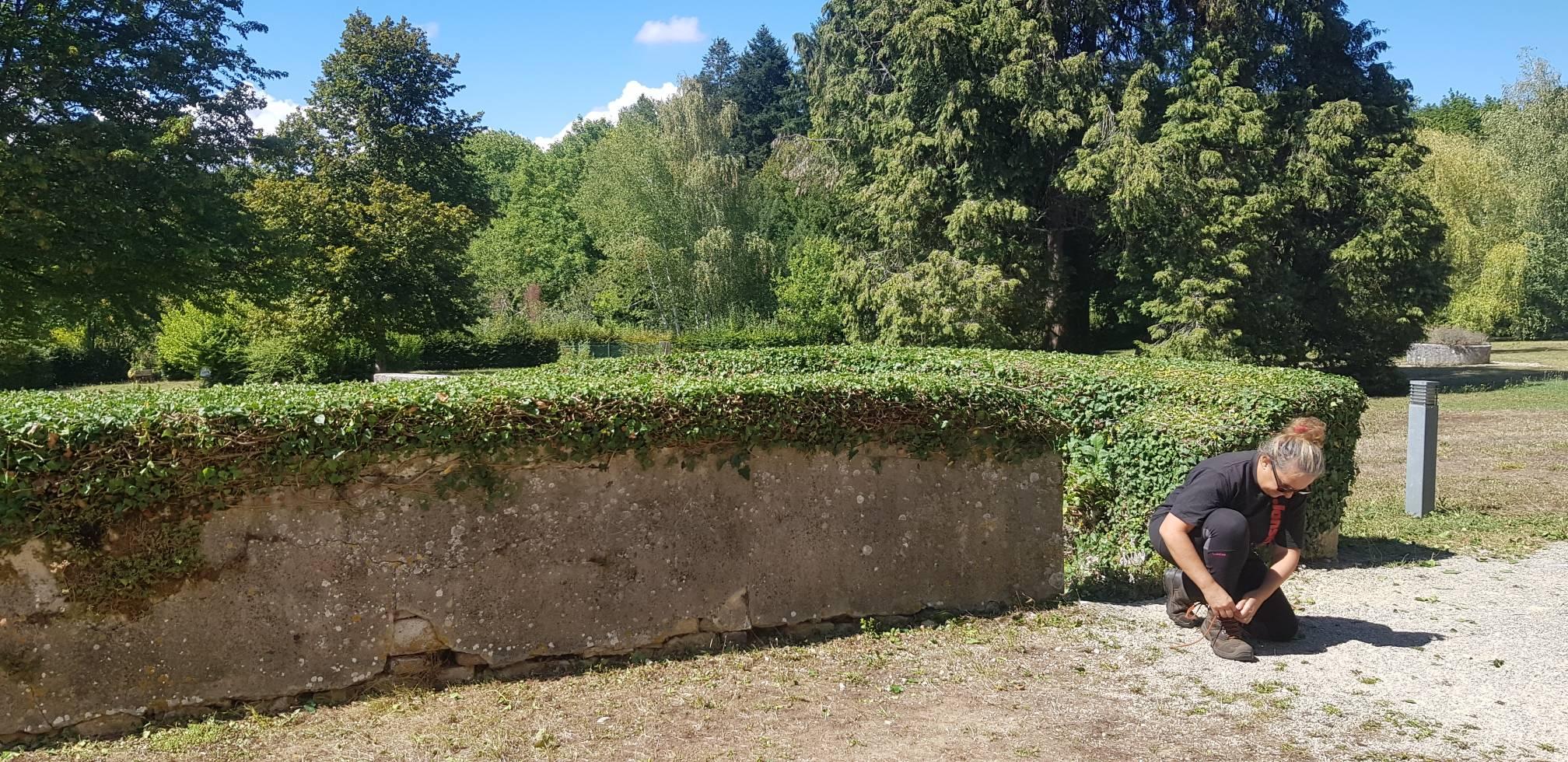 taille jardin